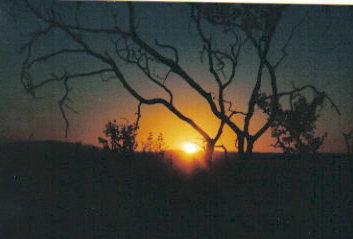 sunrisesilhouette